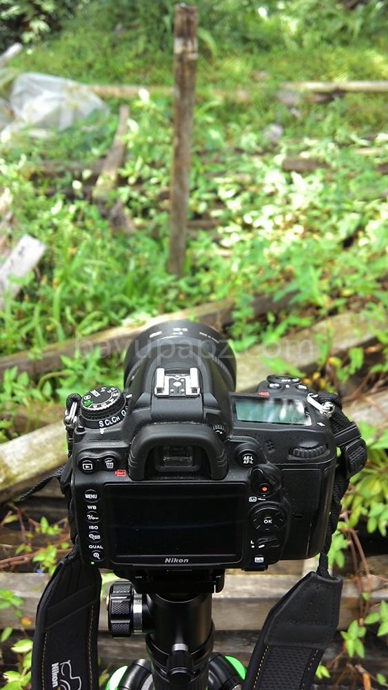 35mmvs50mm D7000