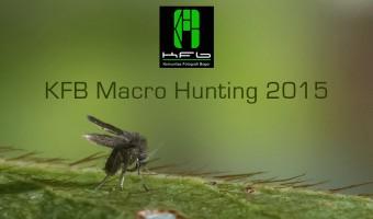 KFB Macro hunting 2015